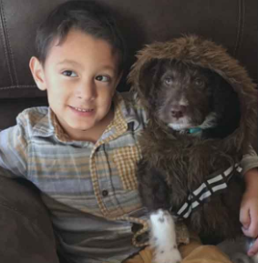 Child With Special Needs Gets New Service Dog